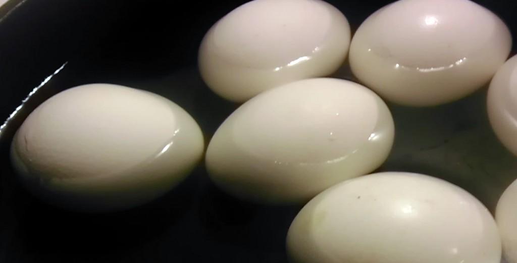 boil-the-eggs